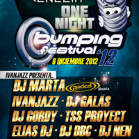 Bumping Festival 2012 @ Venecia