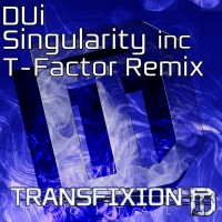 Dui – Singularity (T-Factor Remix)
