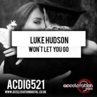 Luke Hudson – Won't Let You Go