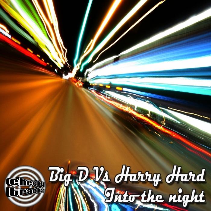 Imagen representativa del temazo Big D vs Harry Hard – Into The Night