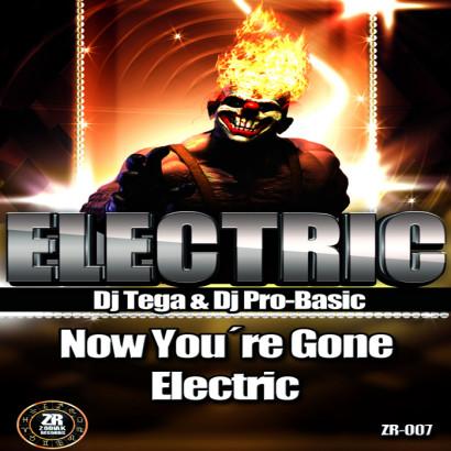 Dj Tega Dj Pro Basic Electric