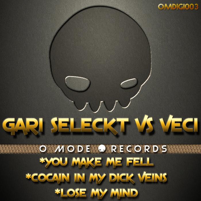 Imagen representativa del temazo Gari Seleckt & Dj Veci – You Make Me Feel