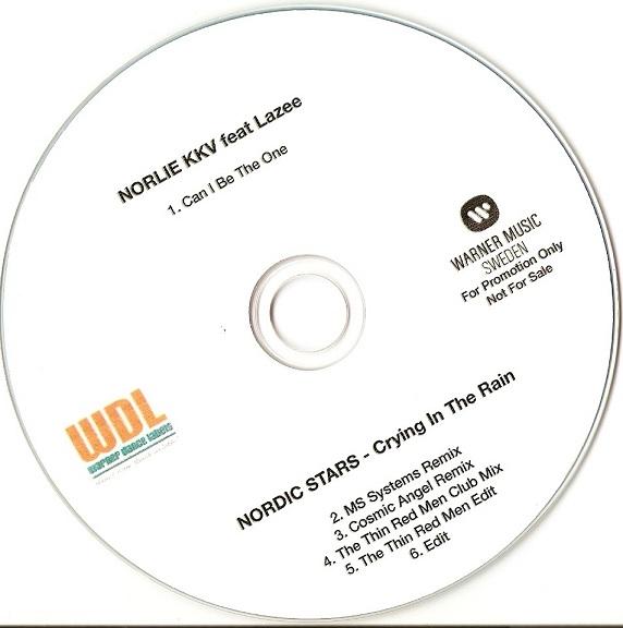 Imagen representativa del temazo Nordic Stars – Crying In The Rain (MS Systems Remix)