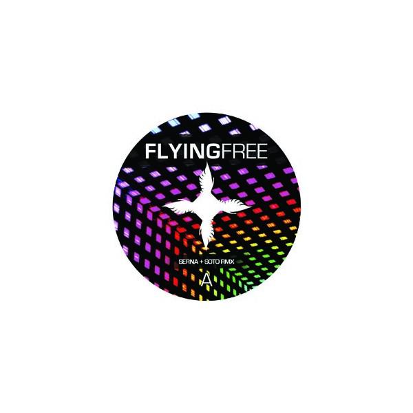 Imagen representativa del temazo Miguel Serna & Raul Soto – Flying Free