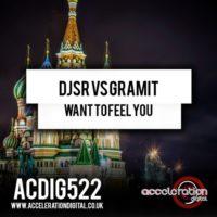 Imagen representativa del temazo DJSR vs Gramit – Want to Feel You