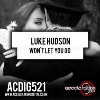 Portada del temazo Luke Hudson – Won't Let You Go