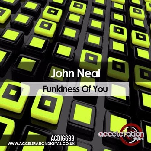 Imagen representativa del temazo John Neal – Funkiness Of You